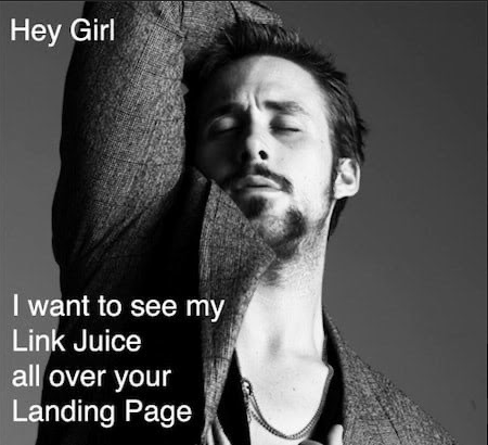 Hey girl, I want to see my Link Juice all over your landing page